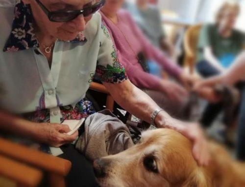Pet Therapy anziani al Centro Diurno Don Guanella